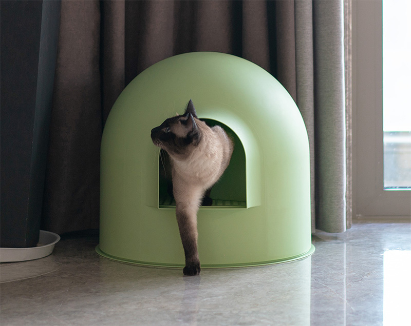 Igloo Cat Litter Box Green by Pidan