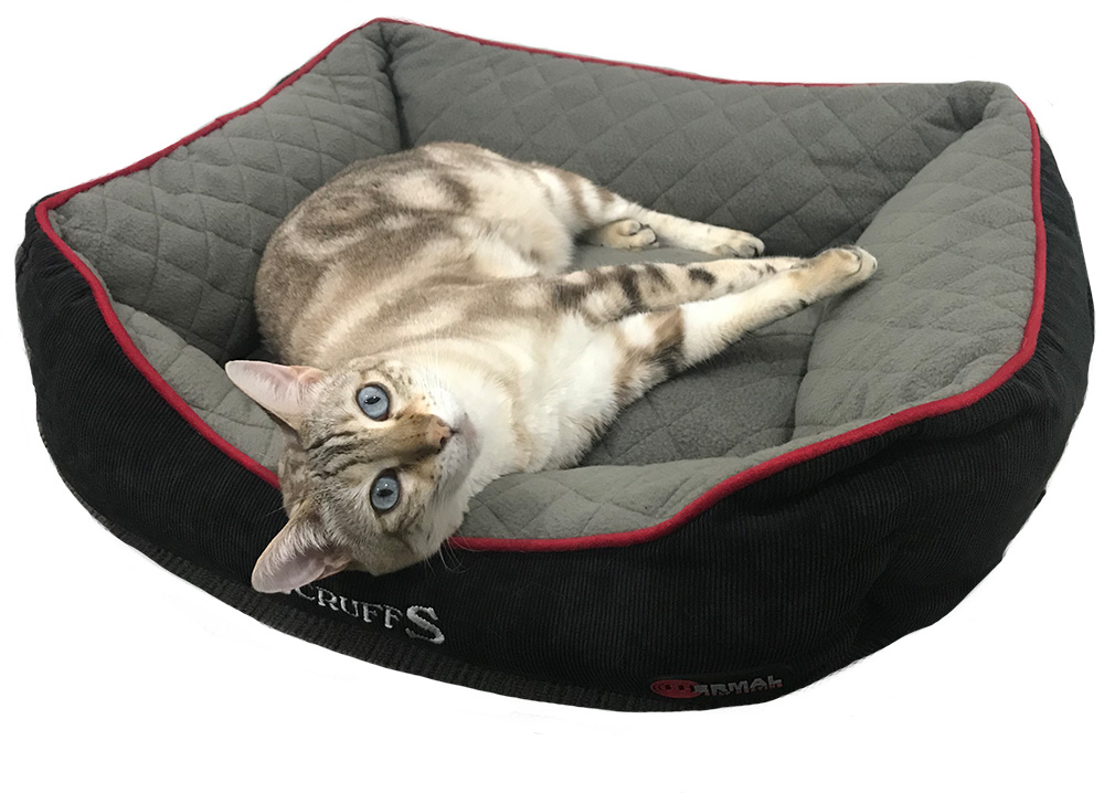 Thermal Self Heating Cat Bed